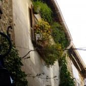 Alpes-Maritimes (06) – Côte d'Azur – French Riviera / Mougins Village – Un village de caractère – Capitale de la Gastronomie et des Arts de Vivre – Photo n° 15