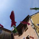 CÔTE D'AZUR / ALPES-MARITIMES (06) / VILLAGES PERCHÉS / FALICON / 31e Fête de l'Oeillet Falicon au pays du soleil levant – Photo n° 12