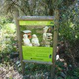 Côte d'Azur / Alpes-Maritimes (06) / Parcs naturels départementaux / Espaces naturels protégés / Nice – Parc du Vinaigrier – Photo n° 13