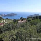 Côte d'Azur / Alpes-Maritimes (06) / Parcs naturels départementaux / Espaces naturels protégés / Nice – Parc du Vinaigrier – Photo n° 18