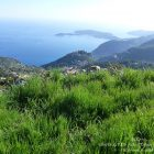 Côte d'Azur / Alpes-Maritimes (06) / Parcs naturels départementaux / Espaces naturels protégés / Parc de la Grande Corniche – Photo n° 10