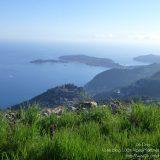Côte d'Azur / Alpes-Maritimes (06) / Parcs naturels départementaux / Espaces naturels protégés / Parc de la Grande Corniche – Photo n° 11