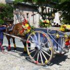 Alpes-Maritimes / Arrière-pays / Vallée de la Roya / Festivités / Tende (06430) / Fête de la Saint-Éloi – Dimanche 10 juillet 2016 – Photo n°17