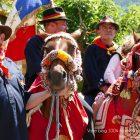Alpes-Maritimes / Arrière-pays / Vallée de la Roya / Festivités / Tende (06430) / Fête de Saint-Éloi – Dimanche 10 juillet 2016 – Photo n°38