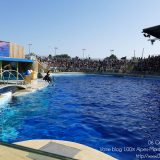 French Riviera / Côte d'Azur / Alpes-Maritimes / Antibes (06600) / Marineland – Parc d'Attraction de la Côte d'Azur – Photo n°24