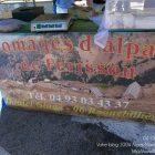 Alpes-Maritimes (06) / Arrière-Pays / Saint-Martin Vésubie / Fête du Pain & des Métiers d'Antan – Fromages d'alpage de Férisson – Daniel Giuge – Photo n°21
