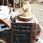 Alpes-Maritimes (06) / Arrière-Pays / Saint-Martin Vésubie / Fête du Pain & des Métiers d'Antan – Fromage de chèvre fermier – Les St Martinoises – Photo n°33