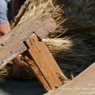Alpes-Maritimes (06) / Arrière-Pays / Haute Vésubie / Saint-Martin Vésubie / Fête du Pain & des Métiers d'Antan – Battage et ventage du blé – Photo n°34