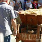 Alpes-Maritimes (06) / Arrière-Pays / Haute Vésubie / Saint-Martin Vésubie / Fête du Pain & des Métiers d'Antan – Battage et ventage du blé – Photo n°42