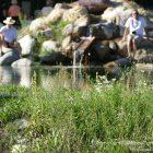 Alpes-Maritimes / Arrière-Pays / Roquebillière (06450) / Vallée de la Vésubie / Loisirs & Détente / Bassin de baignade biologique Roquebillière Thermal – Photo n°8