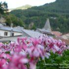 Côte d'Azur / Alpes-Maritimes / Arrière-Pays / Pays de Guillaumes / Guillaumes (06470) / Village de Guillaumes – Photo n°4