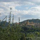 #CotedAzurNow / Alpes-Maritimes / Pays Mentonnais / Gorbio (06500) / Agenda événementiel / Festivités / Fête traditionnelle Gorbio – Branda 2016 – Photo n°1