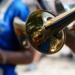 #CotedAzurNow / Alpes-Maritimes / Pays Mentonnais / Gorbio (06500) / Agenda événementiel / Festivités / Fête traditionnelle Gorbio – Branda 2016 – Photo n°12
