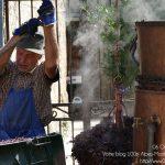 #CotedAzurNow / Alpes-Maritimes / Pays Mentonnais / Gorbio (06500) / Agenda événementiel / Festivités / Fête traditionnelle Gorbio – Branda 2016 – Photo n°2