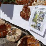 #CotedAzurNow / Alpes-Maritimes / Pays Mentonnais / Gorbio (06500) / Agenda événementiel / Festivités / Fête traditionnelle de La Branda – Branda 2016 – Photo n°51