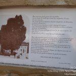 #CotedAzurNow / Alpes-Maritimes / Pays Mentonnais / Gorbio (06500) / Agenda événementiel / Festivités / Fête traditionnelle Gorbio – Branda 2016 – Photo n°8