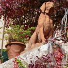#CotedAzurNow / Alpes-Maritimes / Pays de Grasse / Châteauneuf-Grasse (06740) / Festivités / Fête de la Courge – Photo n°34