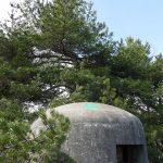#Alpes-Maritimes (06) / Breil-sur-Roya – Sospel / Côté Nature / Outdoor / Randonnée / Mont Gros – Randonnée pédestre – Photo n°31