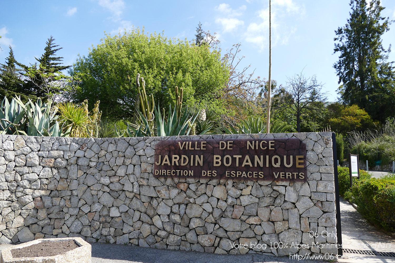 Jardin botanique nice jardin botanique de la ville de for Jardin botanique nice