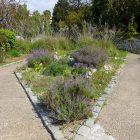 #CotedAzurFrance / Alpes-Maritimes (06) / Nice / Parcs & Jardins / Jardin Botanique de Nice – Corniche Fleurie – Botanical Garden of Nice – Photo n°25