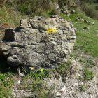 #FrenchMerveilles / Région PACA / Côte d'Azur / Alpes-Maritimes (06) / Pays Côtier / Sainte-Agnès / Côté Nature / Outdoor / Randonnée / Pointe de Siricocca – Photo n°14