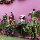 #CotedAzurFrance / Alpes-Maritimes (06) / La Colle-sur-Loup / Manifestations & Festivités / Autour de la Rose – Dimanche 14 mai 2017 – Photo n°31
