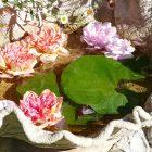 #CotedAzurFrance / Alpes-Maritimes (06) / Gattières / Visites & Découvertes  / Parcs & Jardins / Le Jardin des fleurs de poterie –  Labellisé Jardin remarquable – Photo n° 20