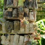 #CotedAzurFrance / Alpes-Maritimes (06) / Gattières / Visites & Découvertes  / Parcs & Jardins / Jardin des fleurs de poterie – Labellisé Jardin remarquable – Photo n° 21