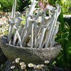 #CotedAzurFrance / Alpes-Maritimes (06) / Gattières / Visites & Découvertes  / Parcs & Jardins / Le Jardin des fleurs de poterie –  Labellisé Jardin remarquable – Photo n° 3