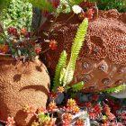 #CotedAzurFrance / Alpes-Maritimes (06) / Gattières / Visites & Découvertes  / Parcs & Jardins / Jardin des fleurs de poterie – Labellisé Jardin remarquable – Photo n° 45