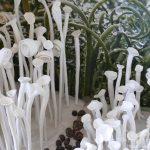 #CotedAzurFrance / Alpes-Maritimes (06) / Gattières / Visites & Découvertes  / Parcs & Jardins / Jardin des fleurs de poterie – Labellisé Jardin remarquable – Photo n° 53