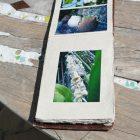 #CotedAzurFrance / Alpes-Maritimes (06) / Gattières / Visites & Découvertes  / Parcs & Jardins / Jardin des fleurs de poterie – Labellisé Jardin remarquable – Photo n° 55