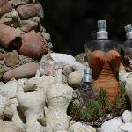 #CotedAzurFrance / Alpes-Maritimes (06) / Gattières / Visites & Découvertes  / Parcs & Jardins / Jardin des fleurs de poterie – Labellisé Jardin remarquable – Photo n° 65