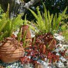 #CotedAzurFrance / Alpes-Maritimes (06) / Gattières / Visites & Découvertes  / Parcs & Jardins / Jardin des fleurs de poterie – Labellisé Jardin remarquable – Photo n° 85