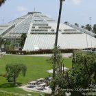 #CotedAzurFrance / Alpes-Maritimes (06) / Nice / Parcs & Jardins / Visite du Parc Phoenix Nice. Vivez toutes les couleurs de la nature !  – Photo n°5
