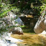 #FrenchMerveilles / Région PACA / Côte d'Azur / Alpes-Maritimes (06) / Vallée de l'Estéron / Côté Nature / Outdoor / Randonnée / Canyon dans la Vallée de l'Estéron – Photo n°5