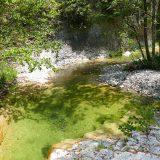 #FrenchMerveilles / Région PACA / Côte d'Azur / Alpes-Maritimes (06) / Vallée de l'Estéron / Côté Nature / Outdoor / Randonnée / Canyon dans la Vallée de l'Estéron – Photo n°12