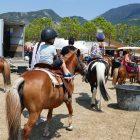 #CotedAzurFrance / Alpes-Maritimes (06) / Levens / Manifestations & Festivités / Fête du Cheval Levens 2017 – 29 et 30 juillet 2017 – Grand pré de Levens – Photo n°12