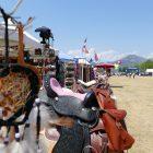 #CotedAzurFrance / Alpes-Maritimes (06) / Levens / Manifestations & Festivités / Fête du Cheval – 29 et 30 juillet 2017 – Grand pré de Levens – Photo n°16