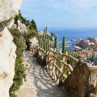 #CotedAzurNow / French Riviera / Principauté de Monaco / Parcs & Jardins / Jardin Exotique Monaco – Septembre 2017 – Photo n°28