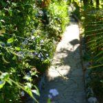 #CotedAzurNow / Alpes-Maritimes (06) / Menton / Parcs & Jardins / Jardin Maria Serena – Menton – Septembre 2017 – Photo n°11