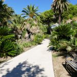 #CotedAzurNow / Alpes-Maritimes (06) / Menton / Parcs & Jardins / Jardin de la Villa Maria Serena – Menton – Septembre 2017 – Photo n°27