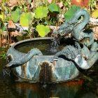 #CotedAzurNow / Alpes-Maritimes (06) / Menton / Parcs & Jardins / Jardin de la Villa Maria Serena – Menton – Septembre 2017 – Photo n°30