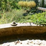 #CotedAzurNow / Alpes-Maritimes (06) / Menton / Parcs & Jardins / Serre de la Madone – Menton – Septembre 2017 – Photo n°27