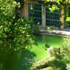 #CotedAzurNow / Alpes-Maritimes (06) / Menton / Parcs & Jardins / Serre de la Madone – Menton – Septembre 2017 – Photo n°38