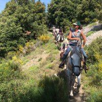 Ranch El Bronco – Randonnées équestres – Col de Vence – 06140 Coursegoules – Alpes-Maritimes – 06 Only – Photo n° 1