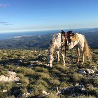 Ranch El Bronco – Randonnées équestres – Col de Vence – 06140 Coursegoules – Alpes-Maritimes – 06 Only – Photo n° 2