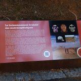 Côte d'Azur / Alpes-Maritimes / Nice / Loisirs culturels & Découvertes / Grotte du Lazaret – Site préhistorique – Photo n°6