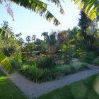 Alpes-Maritimes (06) / Menton / Parcs & Jardins / Jardin botanique du Val Rahmeh – Jardin remarquable – Menton – Février 2018 – Photo n°9