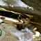 Canyoning en Provence Alpes Côte d'Azur
